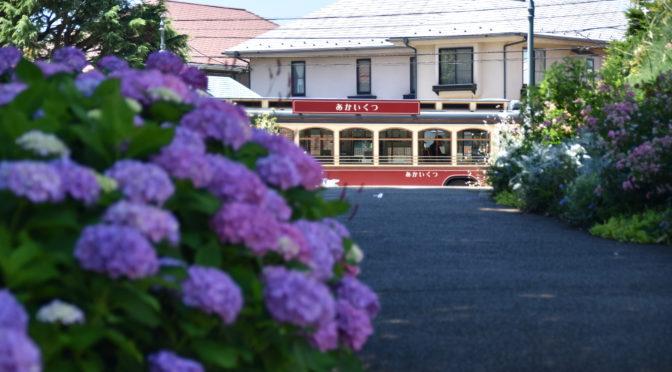 紫陽花の名所やイベントも♪雨の横浜を楽しむ梅雨の観光スポット4選